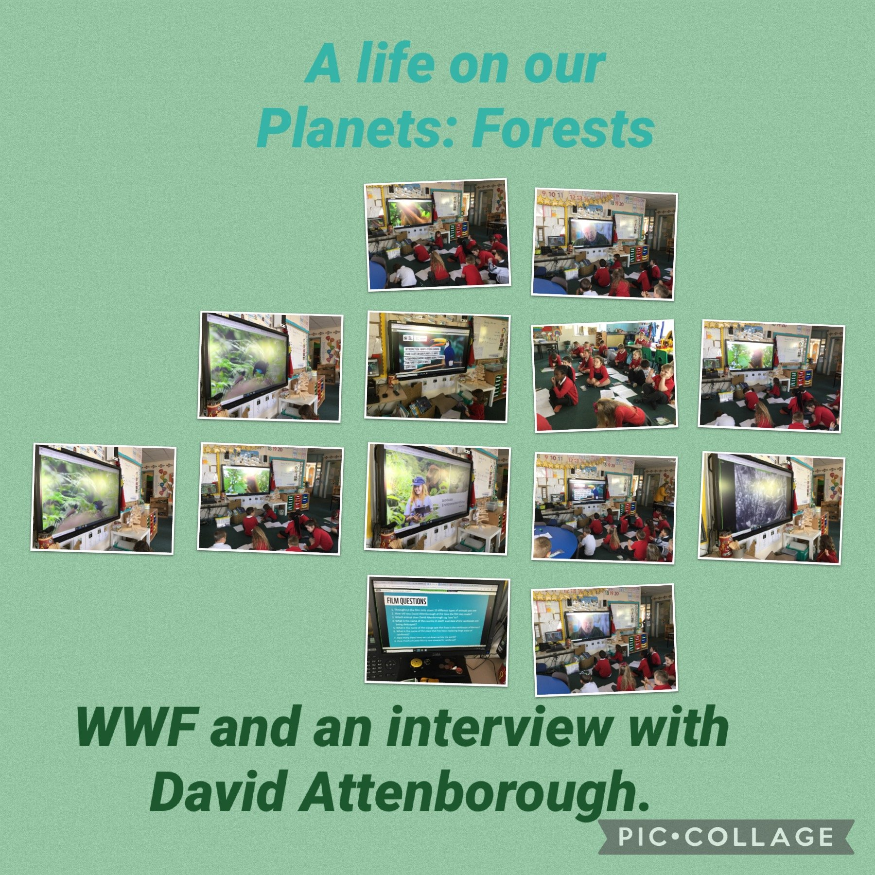 WWF and an Interview with David Attenborough.