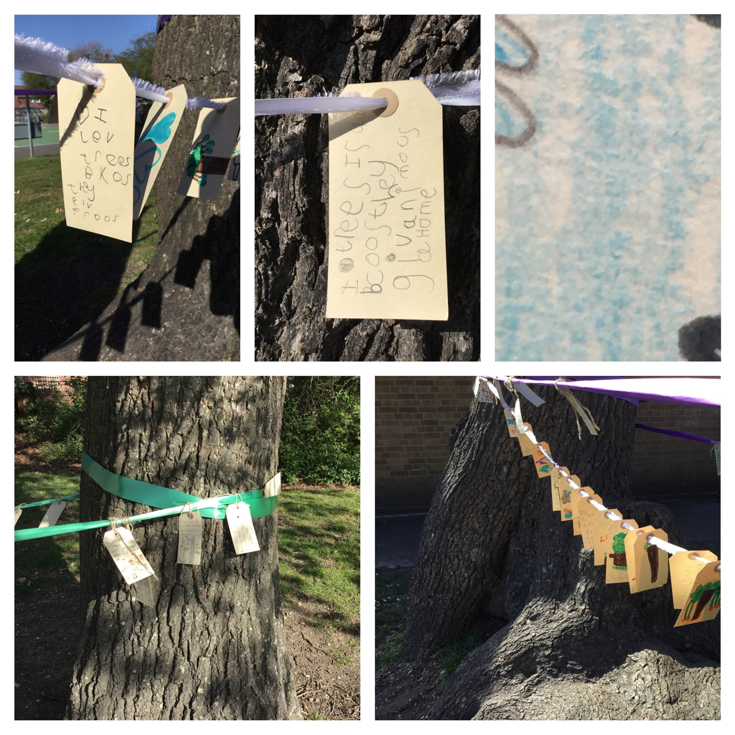 Messages to Trees