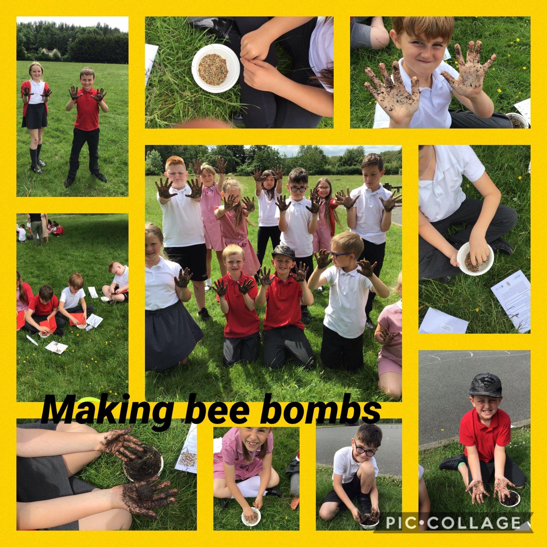 Making bee bombs