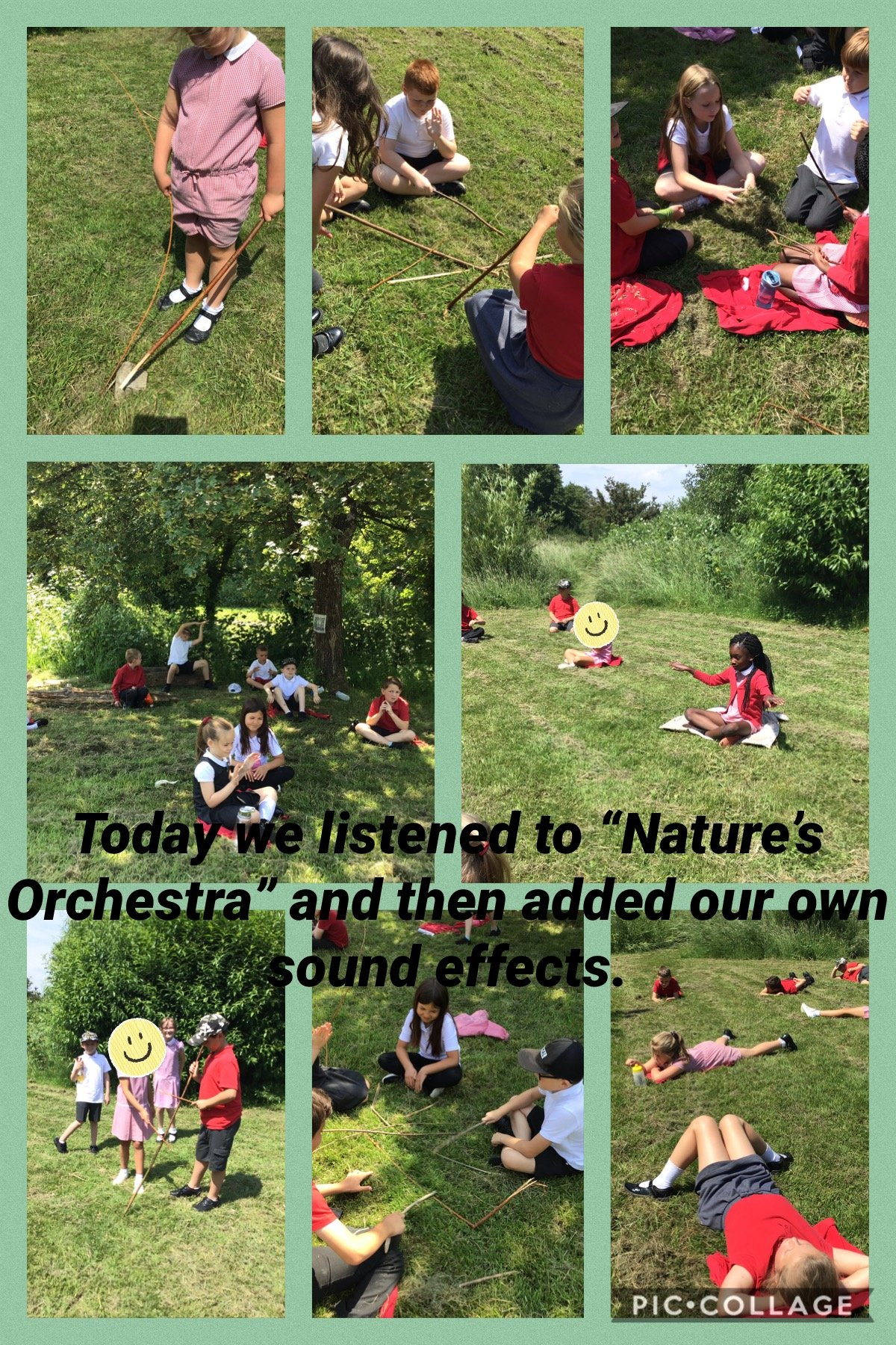 Nature's Orchestra