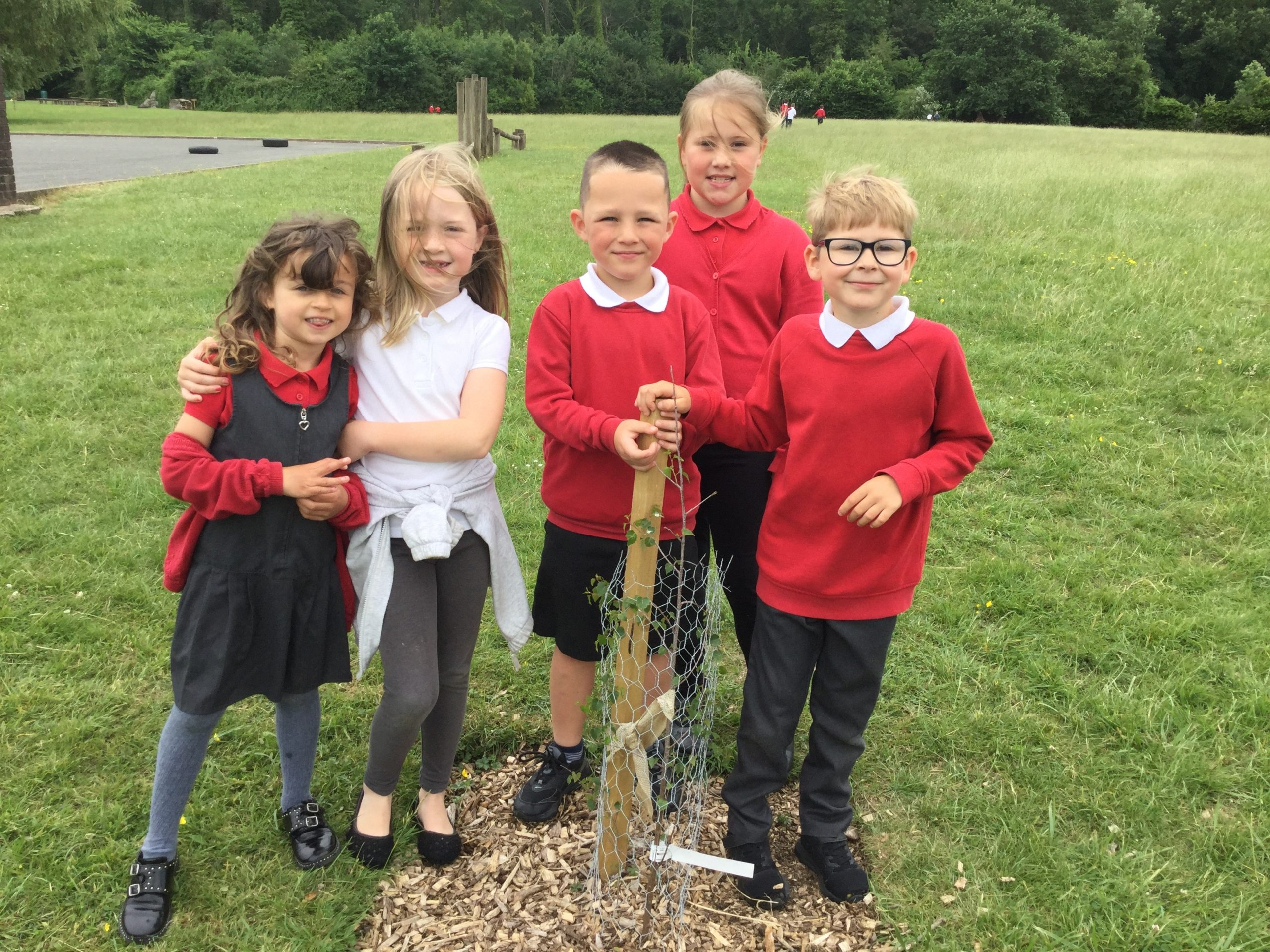 Dosbarth Caerphilly YTC have been checking on the health of our new trees.