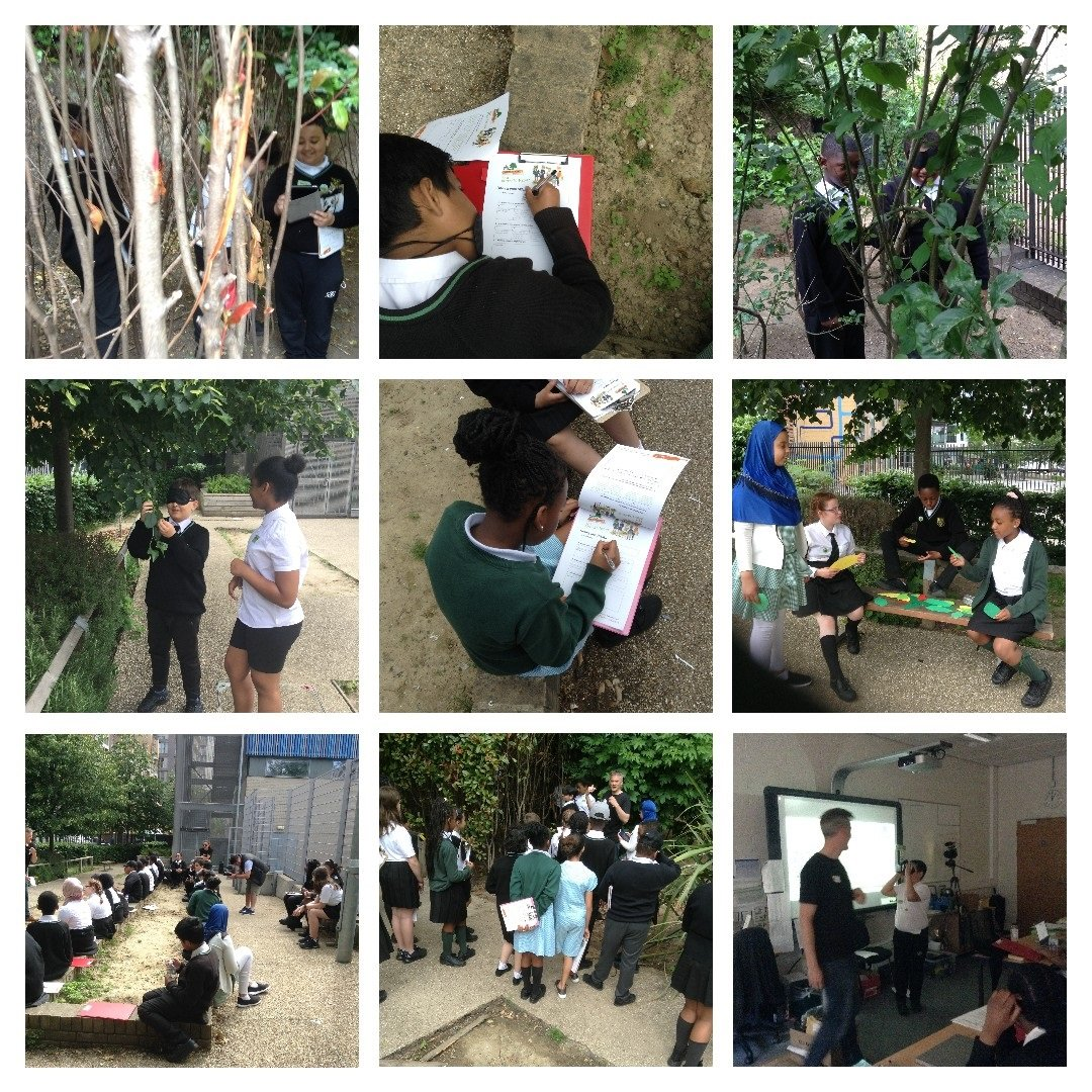 The Tree Council visits Prendergast Vale.