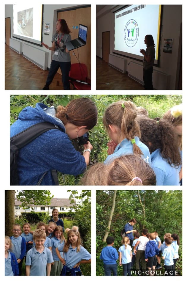 Camera traps at Brentry Primary
