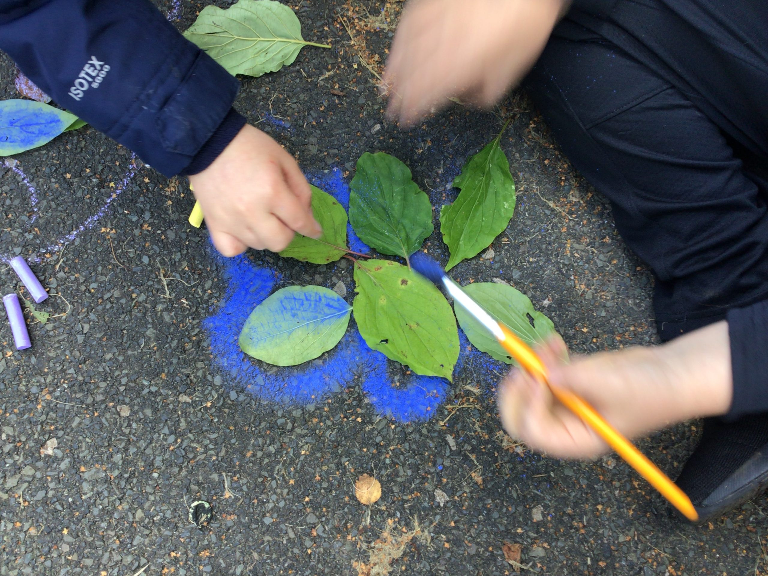Stone Age art lesson using leaves